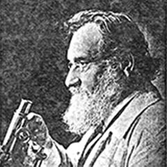 パスツール研究者の生物学者であるエリー・メチニコフ