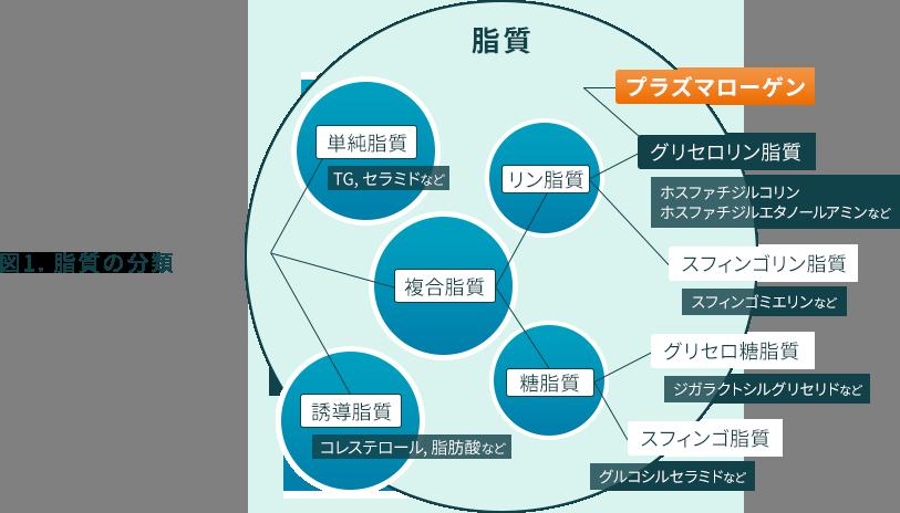 図1. 脂質の分類