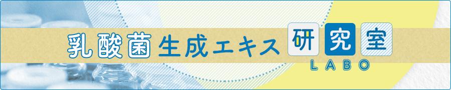 乳酸菌生成エキスLAB